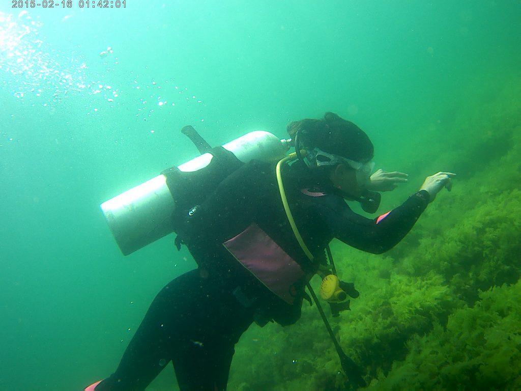 Scufundări subacvatice in Marea Neagră