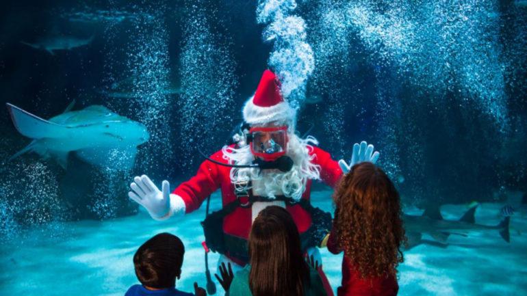 Dacă aș fi Moș Crăciun în 2019…